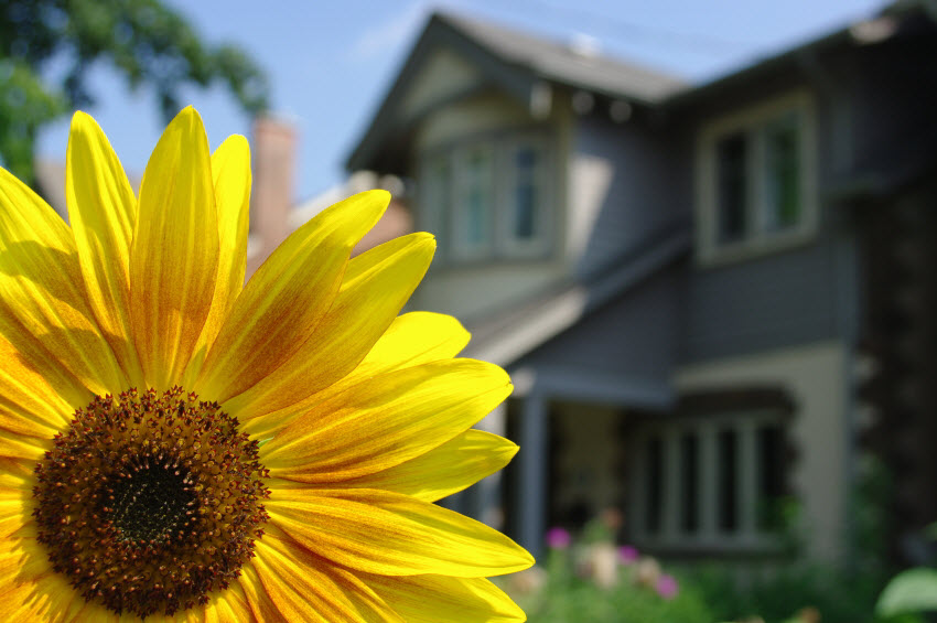 Why spring brings out the home buyers