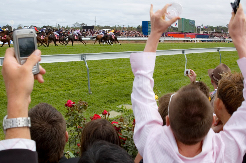 Australians splashing around millions on race day